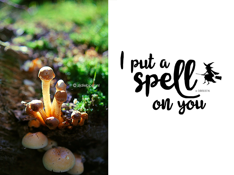 Gratis download: 'I put a spell on you' poster