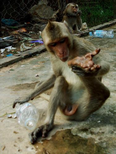 cambodia2012 (31)