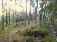 Kråkåsen øst - Kråkåsen - Askim - Østfold - Norway