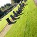 Port Glasgow Cemetery Woodhill (46)