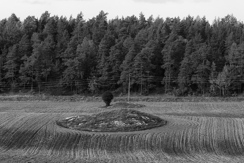 Agricultural lines and curves