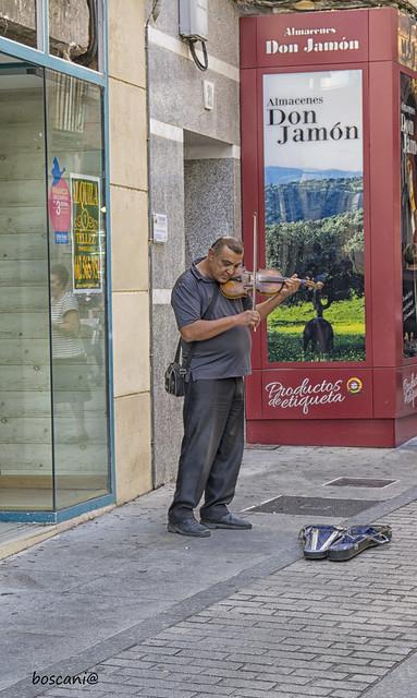 el violinista