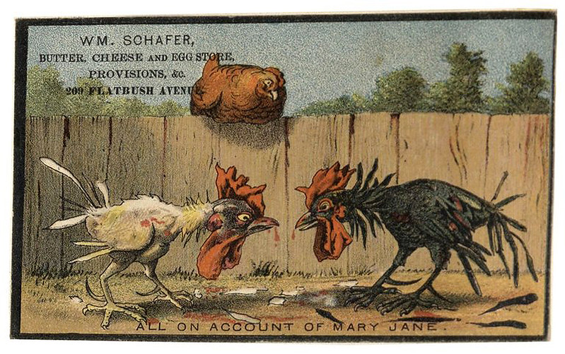 003-Scrapbook of trade cards 1877-1894- Brooklin Museum