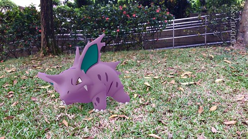 033 Nidorino (position=left)