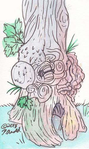 10.8.18 - Gnarly Tree Study