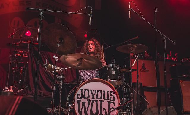 Joyous Wolf 17