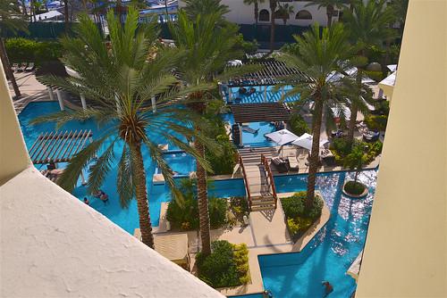 pools & palms