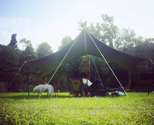20180923 #歐北露 #campinglife #ilovecamping #campingwithdogs #tiitent #HexaPcotton #林球子