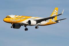SCOOT / Airbus A 320 NEO F-WWIX msn 8441 / LFBO - TLS / sept 2018