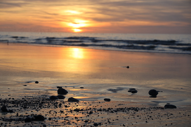 Canon EOS R + RF 24-105mm f/4L IS USM + RF 50mm f/1,2L USM