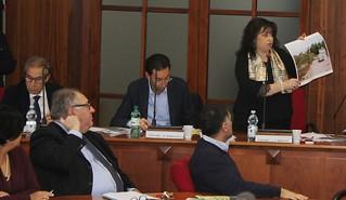 Lucia Brescia in Consiglio nel 2016, quando mostrï le immagini degli abusi e criticitÖ