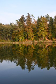 Herbstspaziergang am Ebnisee / Autumn walk at Lake Ebnisee