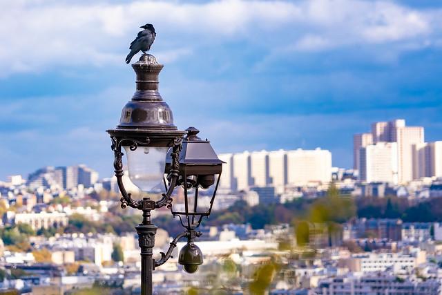 Watching above Paris...