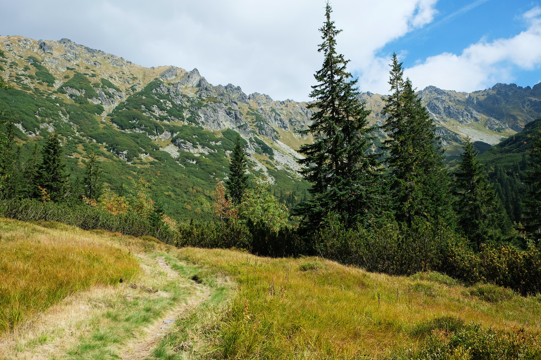 Kôprová Valley, High Tatras