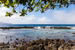 Pupukea Bearch Park, Oahu, Hawaii, US