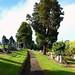 Port Glasgow Cemetery Woodhill (86)