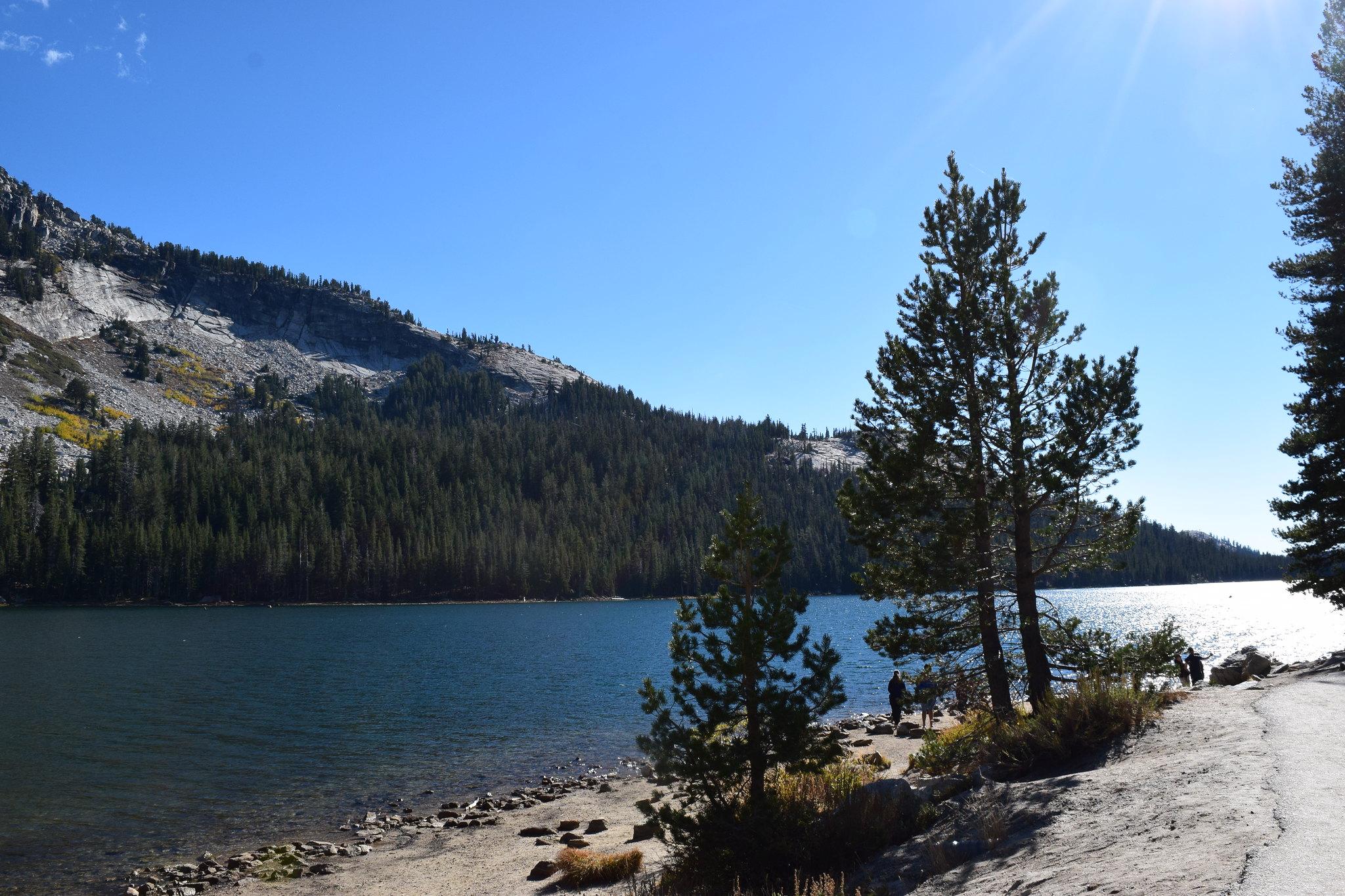 Lake Tenaya Yosemite NP on the Tuolumne road to Tioga Pass
