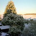 Snowy Furze Platt Landscape