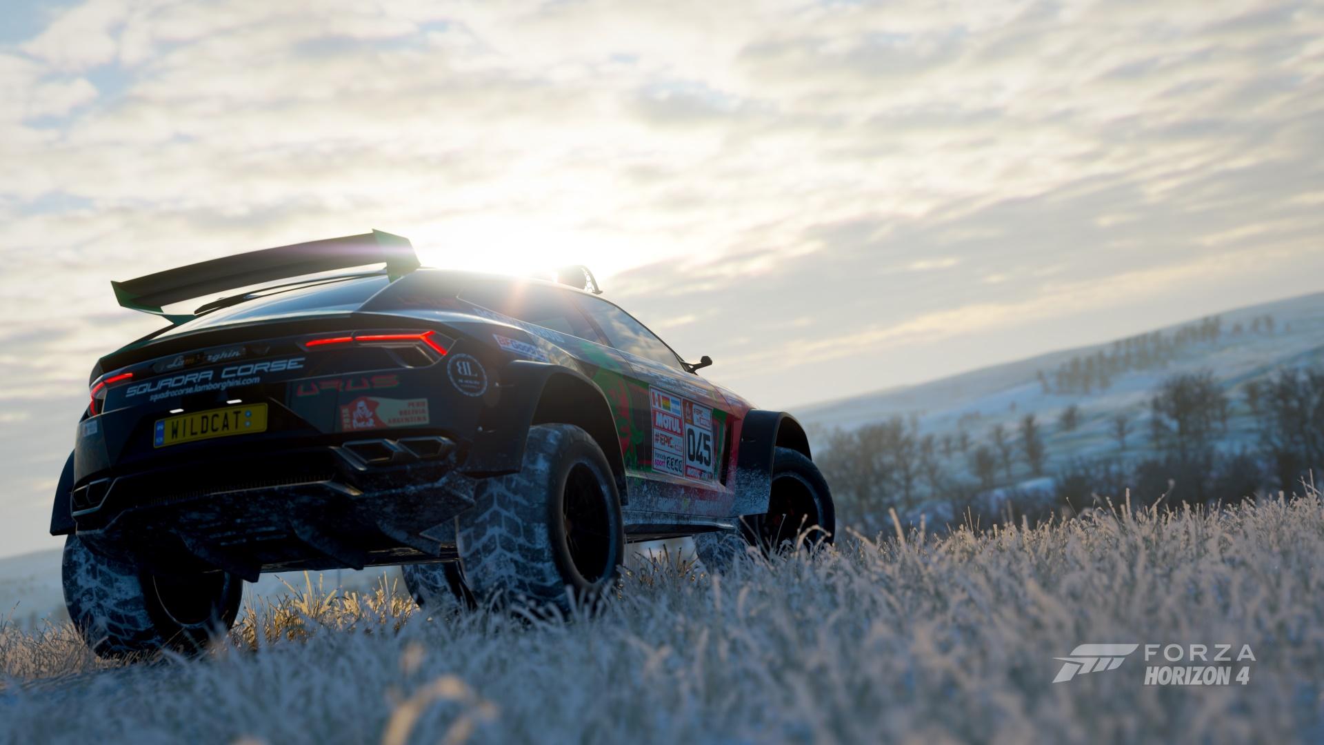 Race Originals Replicas Wildcat Designs Team Akane 82 911