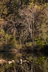 Cunningham Falls State Park 30 Oct 2018  (4)