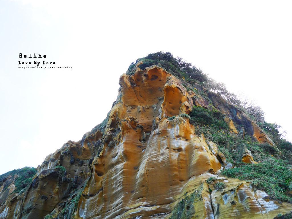新北瑞芳象鼻岩附近景點一日遊推薦番仔澳酋長岩公園 (2)