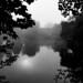 An autumnal, misty, sunny walk - St Neots to Huntingdon