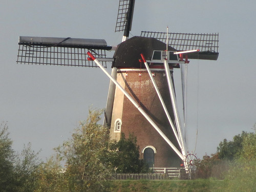 Dutch windmill on the Waal #1