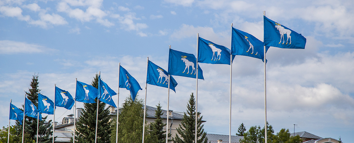 Сколько лосей должно быть на гербе города?