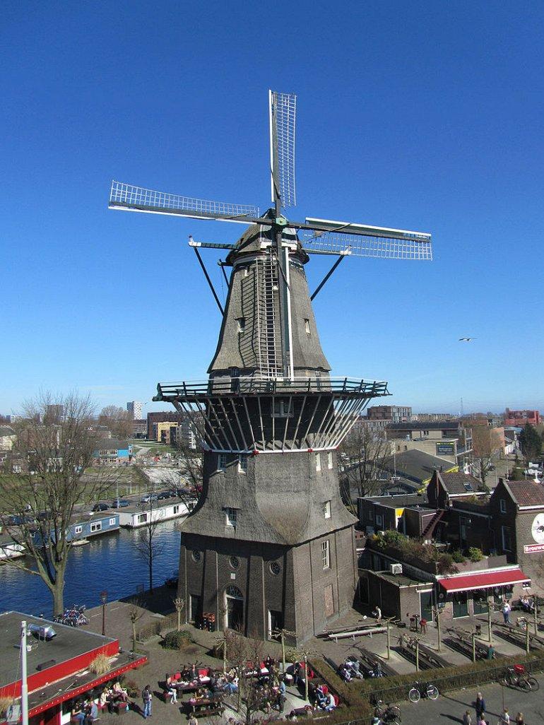 molino Ámsterdam