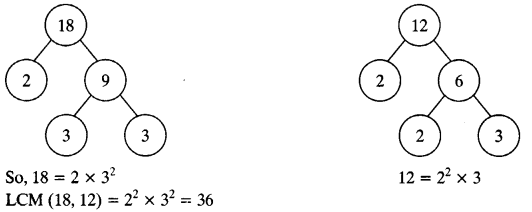 NCERT Solutions for Class 11 Mathematics Chapter 1 Real Numbers e2 7