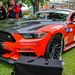VKNG8618.jpg by Gt Car Photography