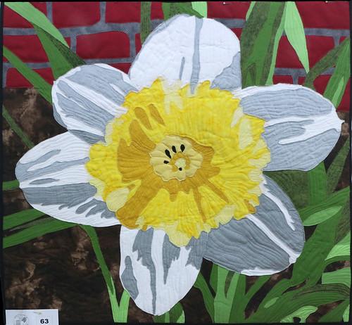 63: Garden Daffodil - Linda Guilbert
