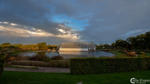 Dawn at Wisley Gardens | by Colin_Evans