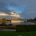 Dawn at Wisley Gardens