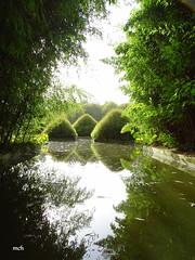 Parc Botanique de Haute Bretagne - Photo of Villamée