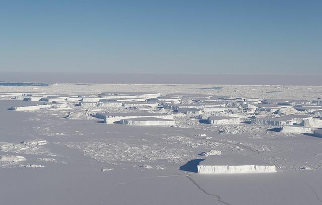 Larsen C tabular icebergs 1