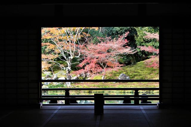tenryuji-koyo1005