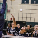*WK JV VB v DF (Courtesy)