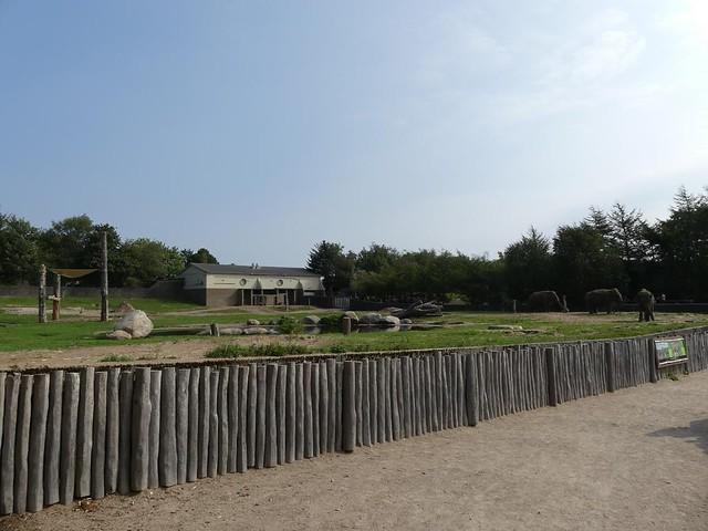 Elefantenanlage, Zoo Givskud