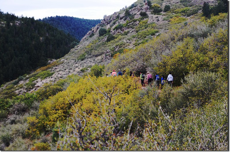 Meadowlark Trail, Deer Creek Canyon Park (23)