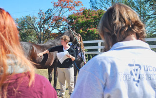 Jenifer Nadeau offers a demonstration at the department's annual Connecticut Horse Symposium.
