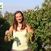"""International Vine & Wine Programme""- Tuscany, Italy"