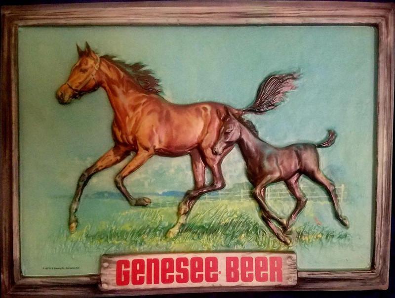 Genesee-horses