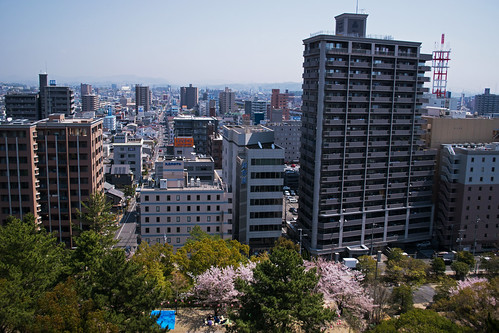 fukuyama fukuyamacastle japan hiroshima sakura cherry blossoms flowers nature spring hanami nikon d5500 日本 さくら 桜 花見 福山
