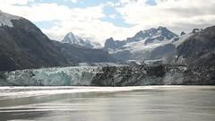 Johns Hopkins Glacier calving