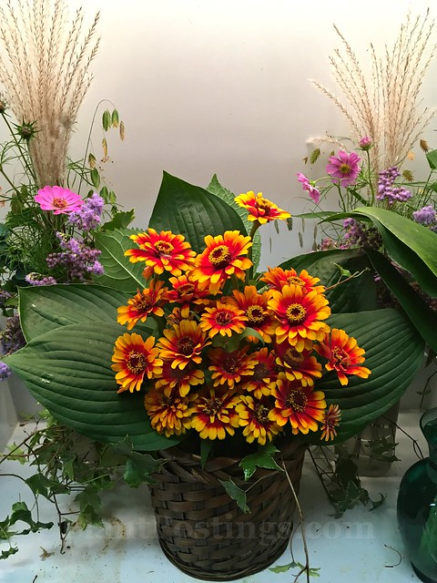 arrangement 2