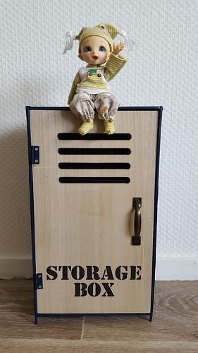 [Vends] Casier en bois et métal (taille Yo-SD/MSD) - 8 €. 45442102222_fa24433e99