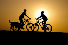 Silhouette of Cyclists.