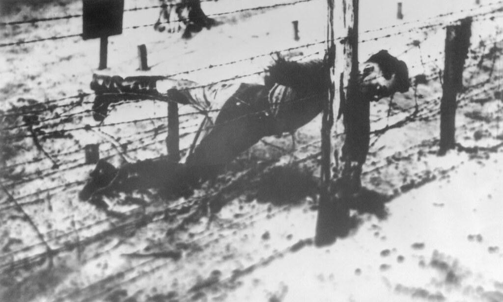 Старший лейтенант Яков Джугашвили, сын Сталина, сдавшийся в плен немцам3