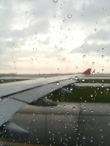 flight-back